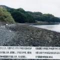 椎ノ木崎遺跡