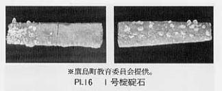 PL.16