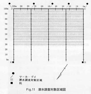 Fig.11 潜水調査対象区域図