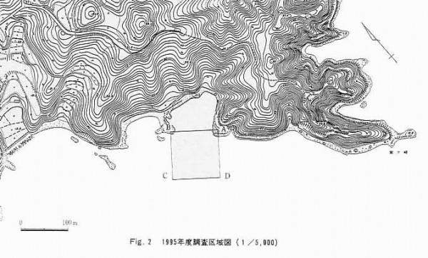 1995年度調査区域図(1/5,000)
